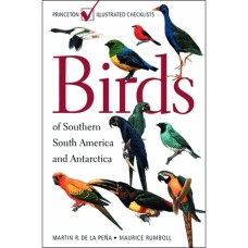 Birds of Southern South America
